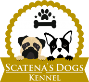 Scatena's Dogs Kennel